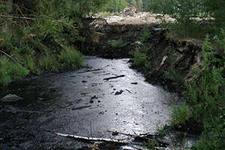 Крик природы – битумное озеро в Дербышках
