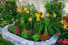 Этим летом цветов в Казани станет больше на треть