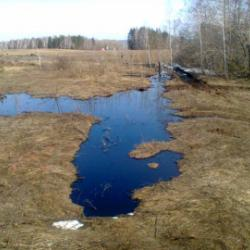 Происшествия: нефть, аферы и грязные тряпки