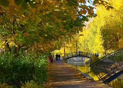 казанских архитекторов, в парке Горького появится новый фонтан