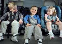 Ученые обнаружили сотни штаммов болезнетворных бактерий в детских автокреслах