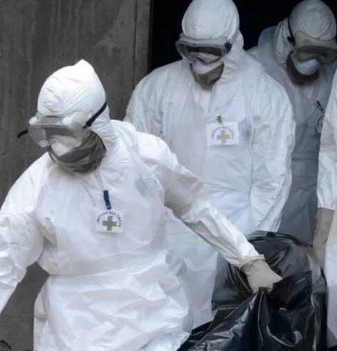 Возможности распространения бубонной чумы
